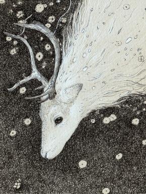 Artist- Kaelycea