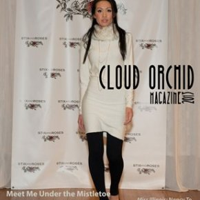 Past Issues -Meet Me Under the Mistletoe Red Carpet Fashion Show 2013