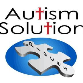 Autism Solution Pieces