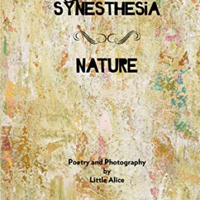 Ramblings of a Glass Mind – The Synesthesia Poetry Books