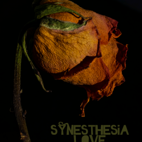 Synesthesia – Love