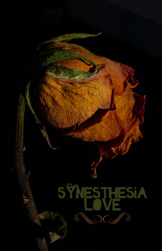 SynesthesiaLove